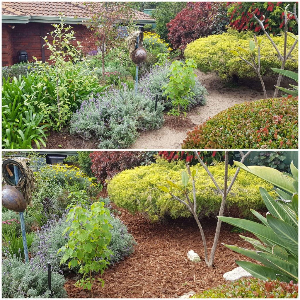 Before & After Mulch #1