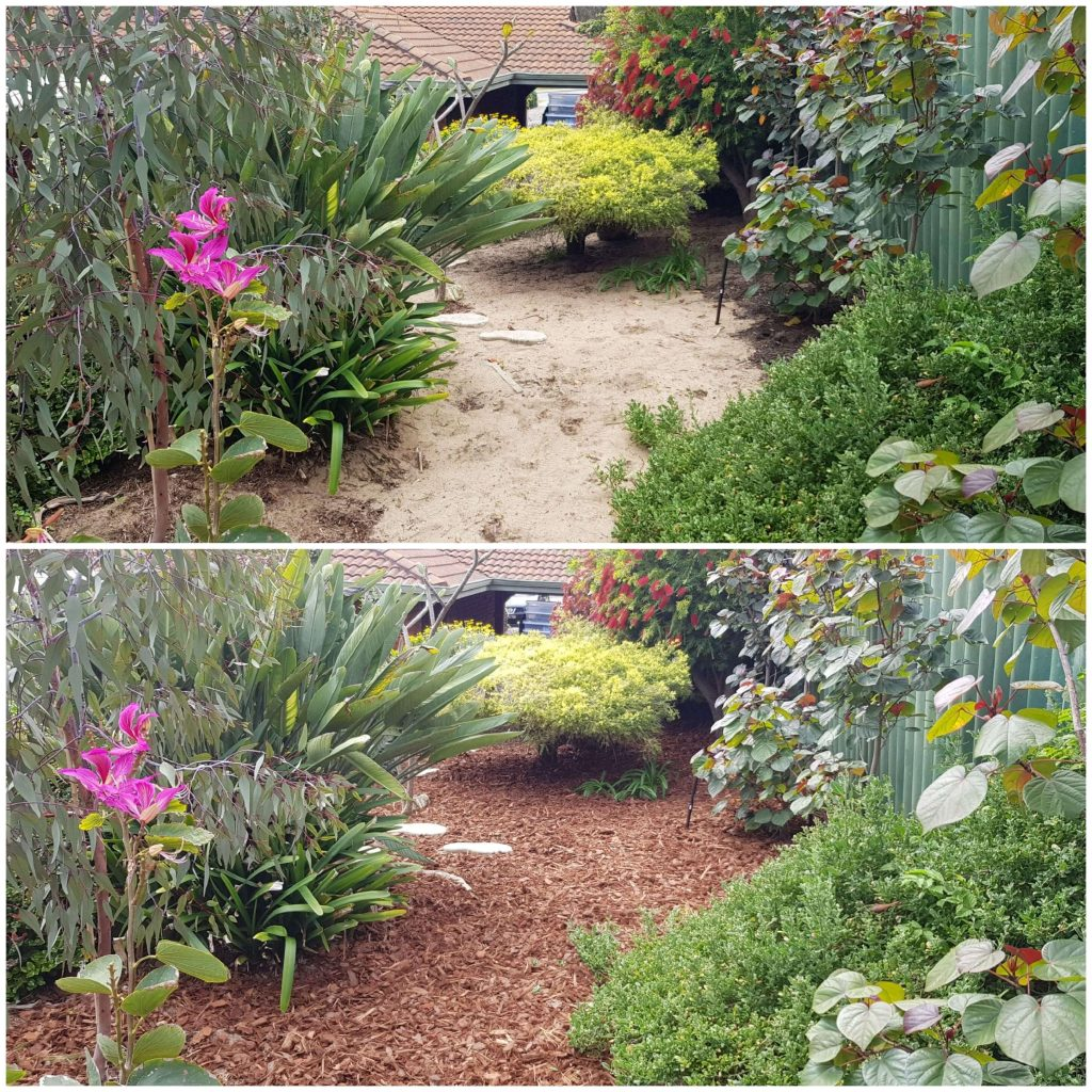 Before & After Mulch #2
