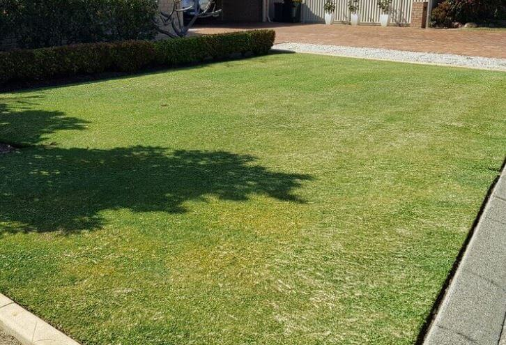 lawn-mowing-service-perth
